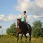 konie-19
