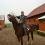 konie-37