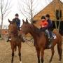 konie-39
