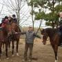 konie-41