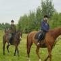 konie-45