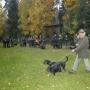 xxvi-i-xxvii-midzynarodowy-konkurs-pracy-dzikarzy-przechlewko-2013_fot-waldemar-feculak_127