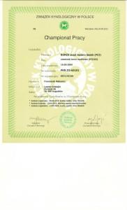 Certyfikat championatu pracy