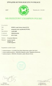 Certyfikat championatu młodzieży